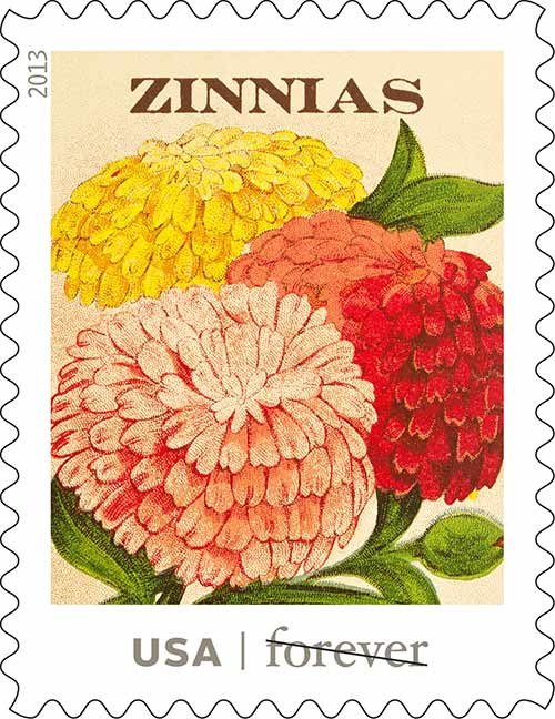 Vintage seed packets and the history behind them